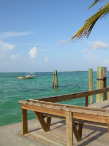 We can't provide this view, but if you protect the decking, it will last longer.