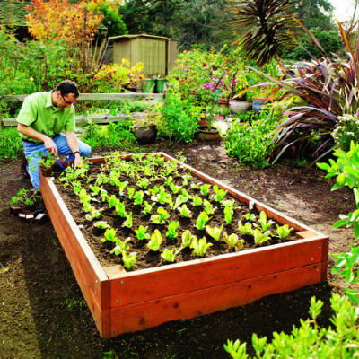 woodworking project idea for gardens